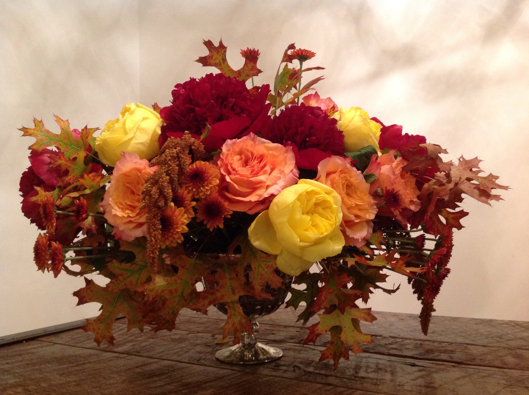 Fall Roses with Red Oak leaves
