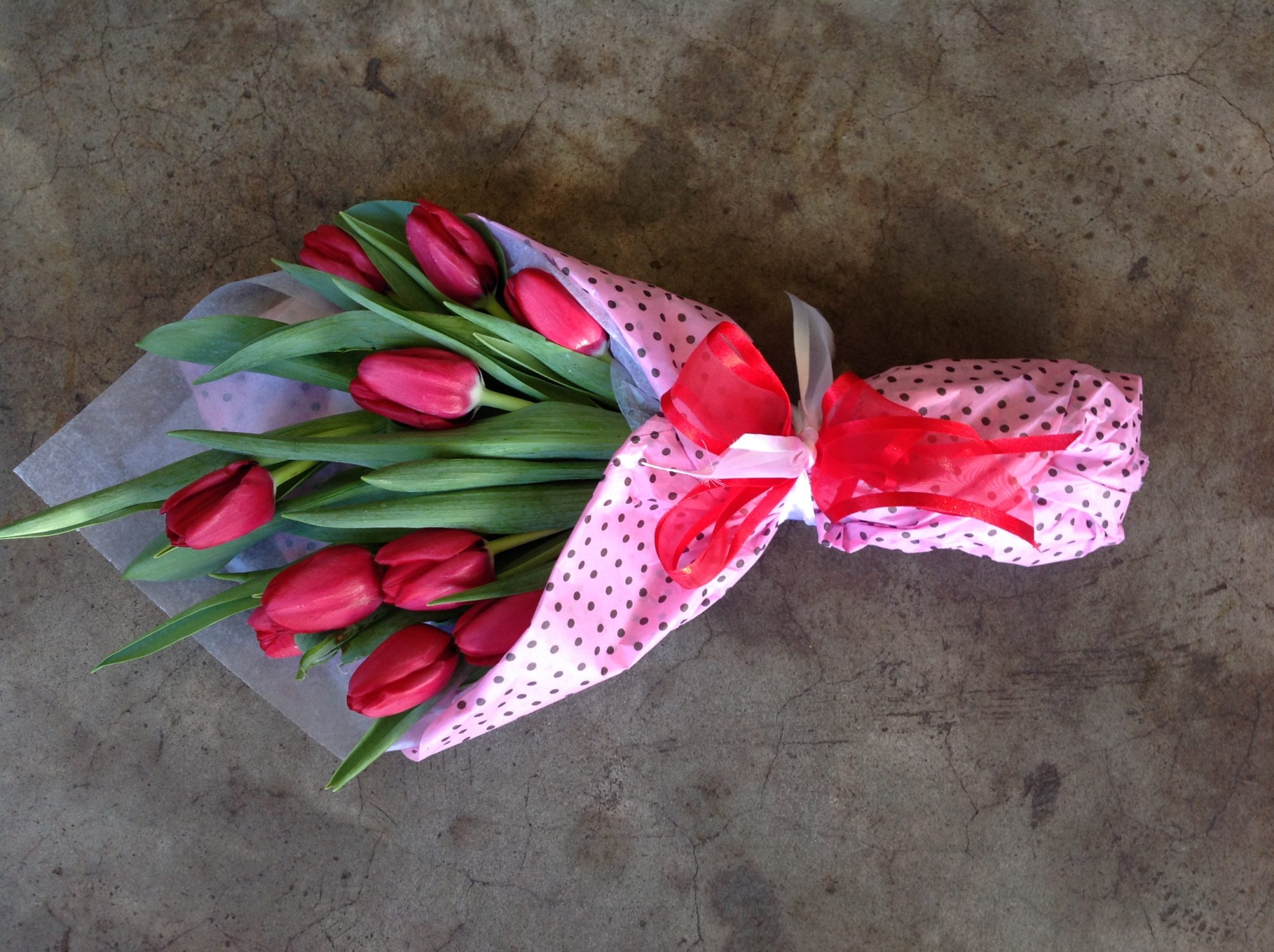 Tulips wrapped
